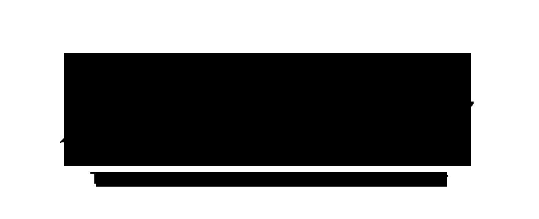 Acemywriter